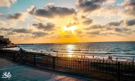 يافا والشاطئ
