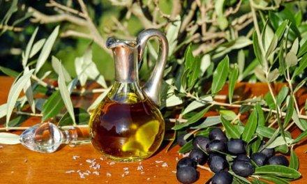 لو يذكُرُ الزيتون غارِسهُ لصارَ الزيتُ دمعاً